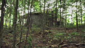 104OrgiederGewaltWaldhütte1