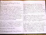 Christa's Diary