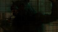 Werwolffights5