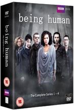 DVD1-4