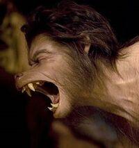 Werwolf1