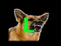 Dog Ls