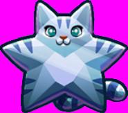 Silver Star Cat