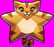 Bronze Star Cat