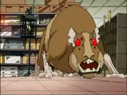 Mutanthampster
