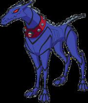 Khber köpeği
