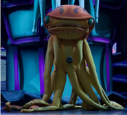 Squidstrictor pose teatro