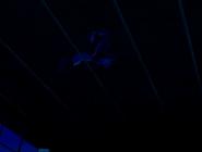 Monoaraña en el alba de estrella negra