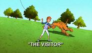 Visitory (29)