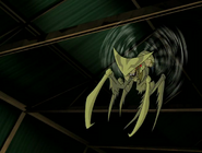 Insecto del doctor animo