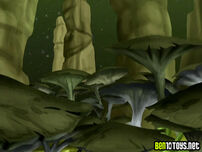 Giant fungals