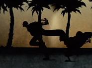 Ninjas!!...