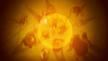Vlcsnap-2015-08-16-22h37m53s884