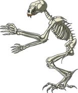 HS ConceptArt Skeleton