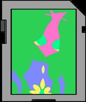 DNA Card BDB Imaginate