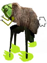 Animild