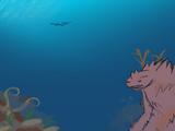 Coral Titanoform