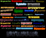 Brywarrior