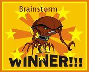 Winner brainstorm