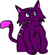 CAT REDESIGN
