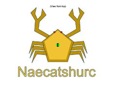 Naecatshurc
