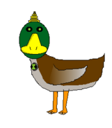 Unicorn Duck