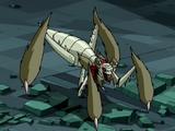 Terroranchula (gatunek)