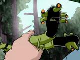 Жук-червяк