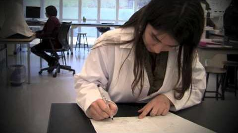 Berkshire Students Enter INTEL Science Competition