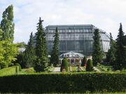 Gewaechshaus botanischergarten berlin