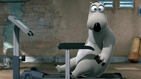 BERNARD The gym