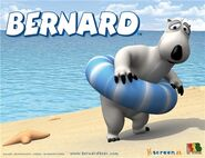 Bernardbear