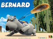 Bernard-Bear-in-Parasit