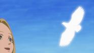 Griffith el Halcón Blanco (anime)