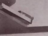 Kentarou Miura
