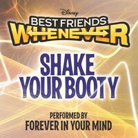 Shake Your Booty Official Cover HD