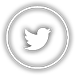 Twitter Tile