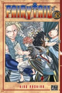 Fairy-tail,-tome-35-374370-250-400