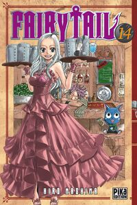 Fairy-tail,-tome-14-511955