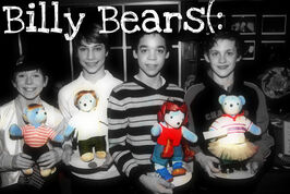 BILLY BEARS1