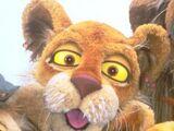 Cleo Lion