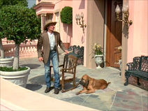 Jed with Duke hearing music