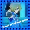 Wales Cetus (1)