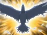 Rock Crow 125B