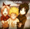 Naruto,Sasuke,Sakura Avi