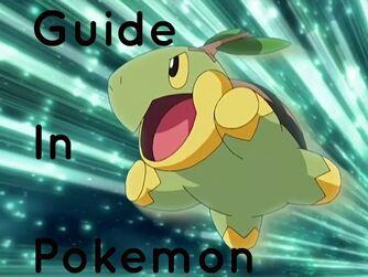 Guide in Pokemon