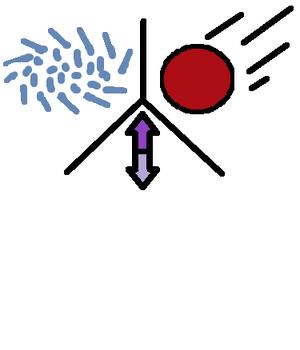 Celestrial logo