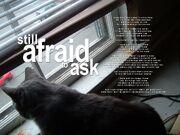 Still afraid to ask (3)