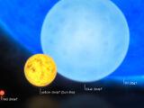 Anti Star (R136a1)