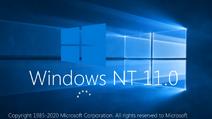 NT11.0